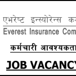 Everest Insurance Company Vacancy for Various Post
